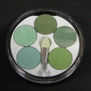Ombretti margherita con pennellino nr. 5 verde Royal