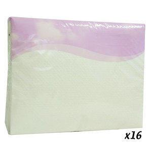 Asciugamano monouso hairlaid 48x80 cm 25 pz 16 confezioni