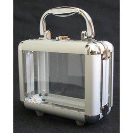 Beauty Case EF1 Trasparente