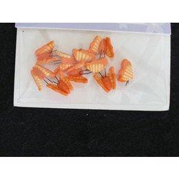 Decoro per unghie farfalla 3D arancio