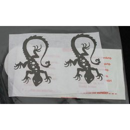 Calcomania per Tattoo Gecko Eulenspiegel