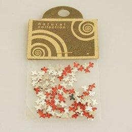 Brillantino Natural Collection fiocco rosso bustina