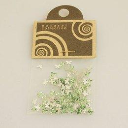 Brillantino Natural Collection fiocco verde chiaro bustina