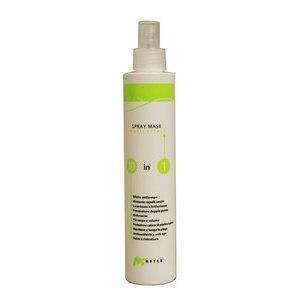 Spray mask 10 in 1 250 ml Master