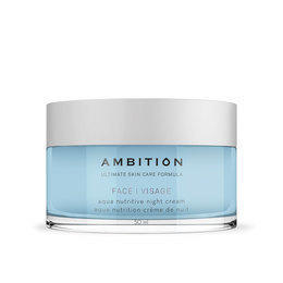 Crema Notte Viso Aqua Nutritive Ambition 50 ml.